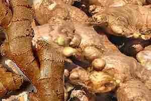 Cómo tomar raíz de jengibre para prevenir y curar enfermedades